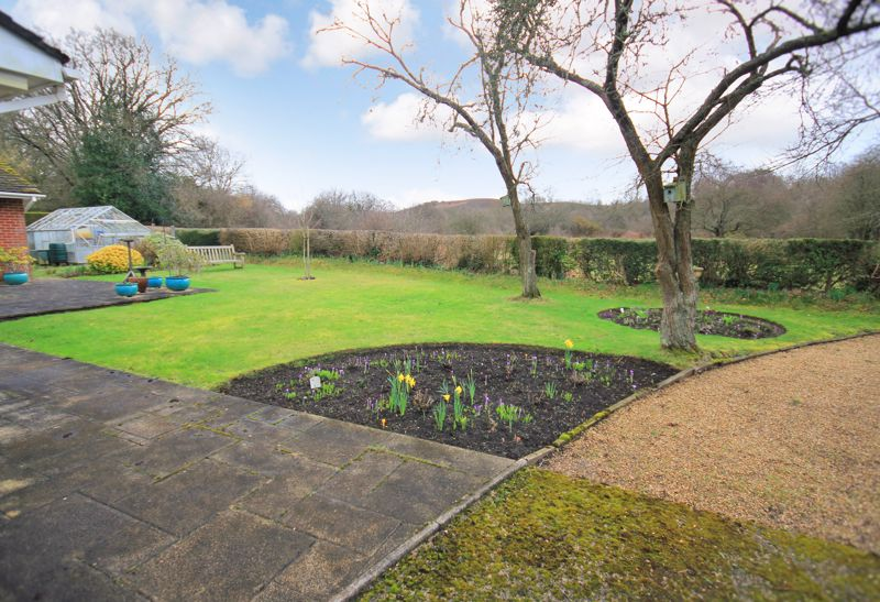 Garden with views over the New Forest