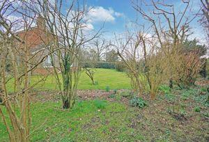 Garden with light woodland area