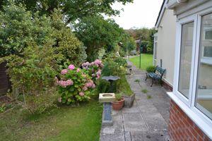 Birch Lawn