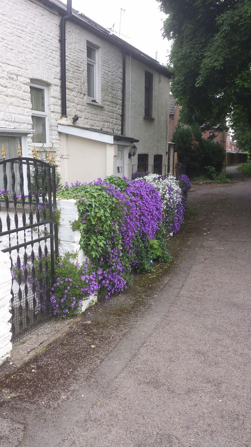 Cromwell Road
