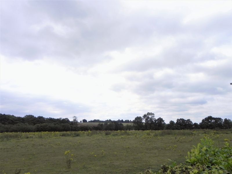 Springfield Road Sutton Coldfield