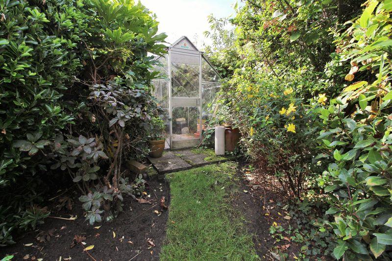 Rear Garden - Greenhouse