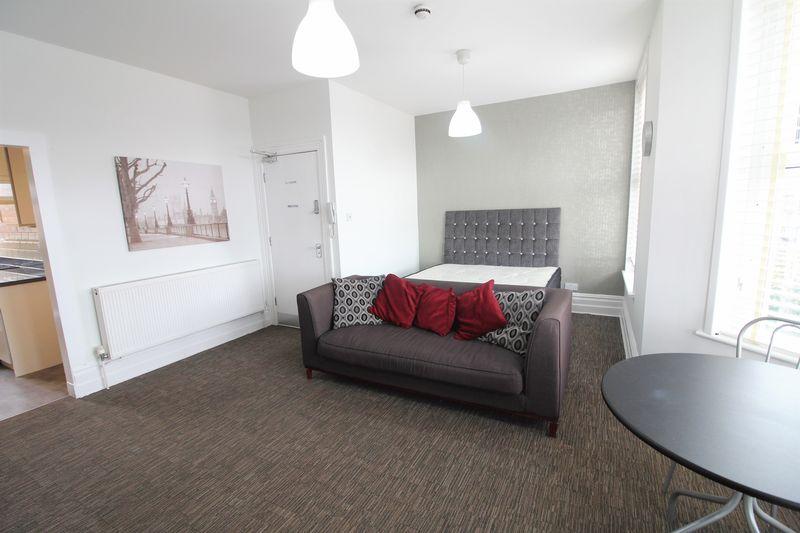 Open Plan Living Room/ Bedroom