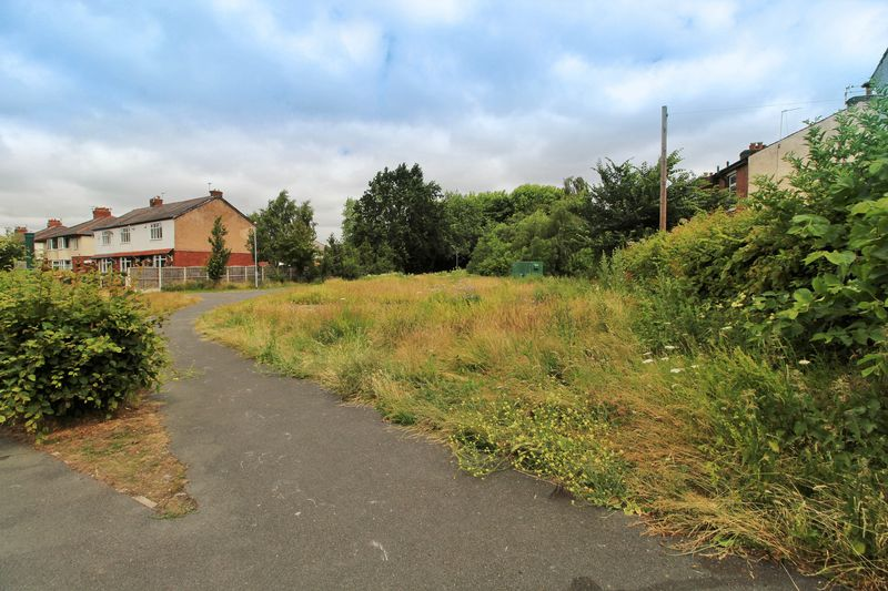 Bee Meadow to the Side (Left)