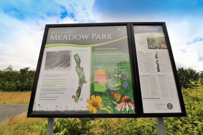 Andy's Bee Meadow