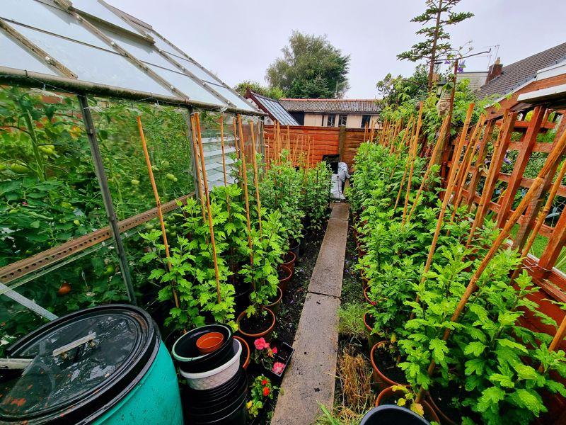 Vegetable Garden Area