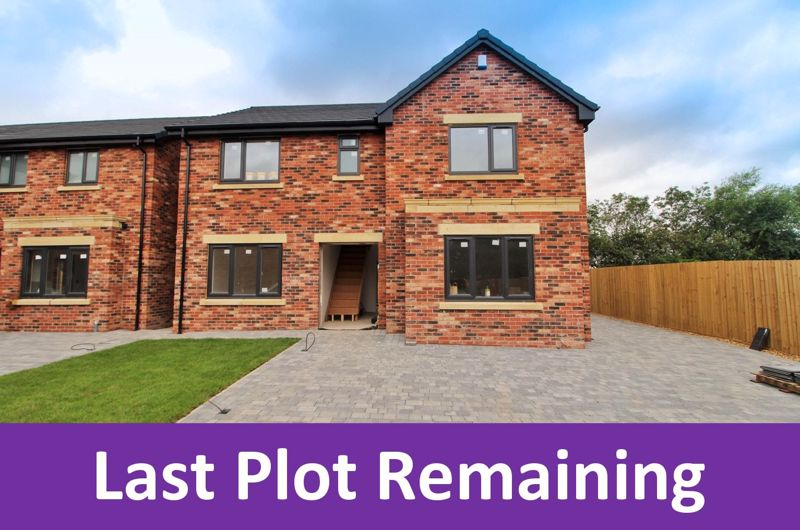 Last Plot Remaining
