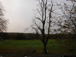 Godstone Green