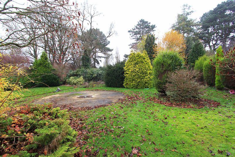 Rear Garden (End Section)