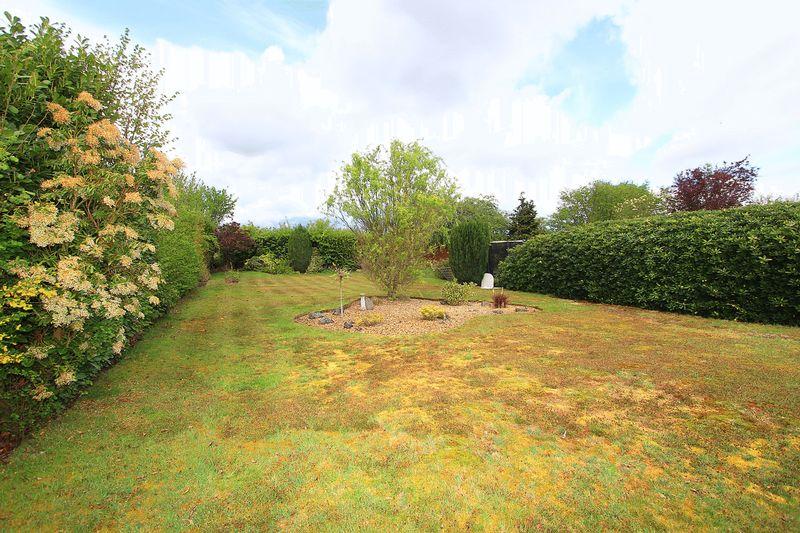 Rear Garden (Lower)