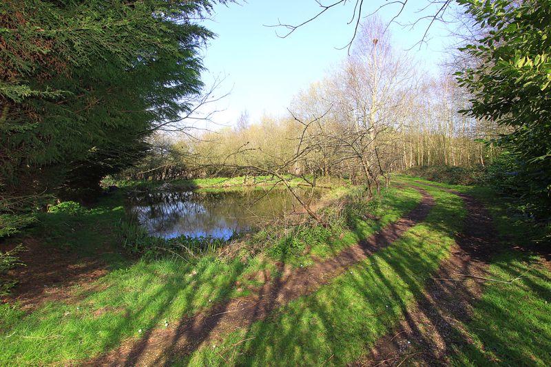 Rear Fishing Pond
