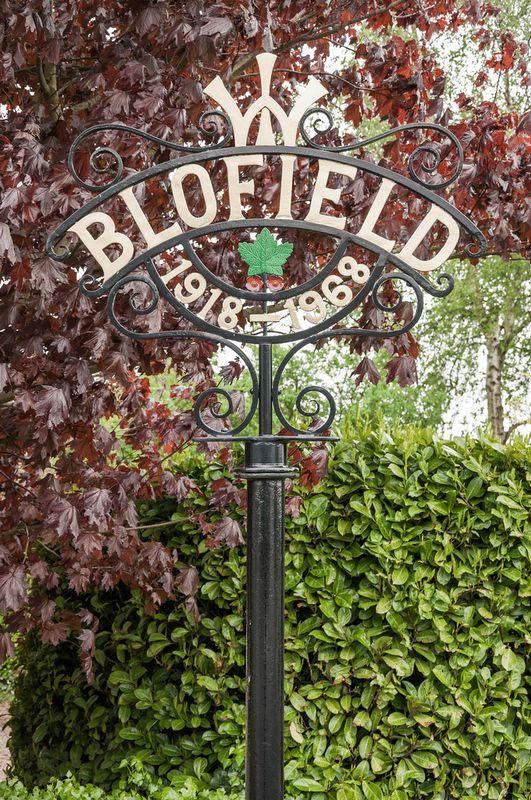 Fox Lane Blofield