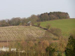 Plump Hill