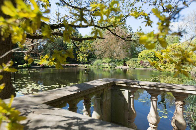 The Ride Alderley Park