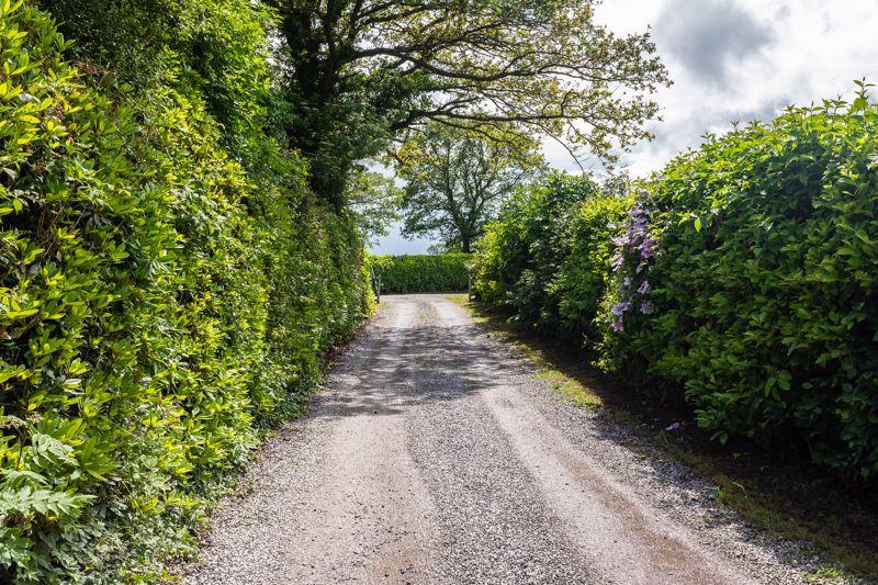 Snelson Lane