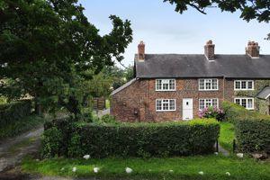 Bucklow Hill Lane