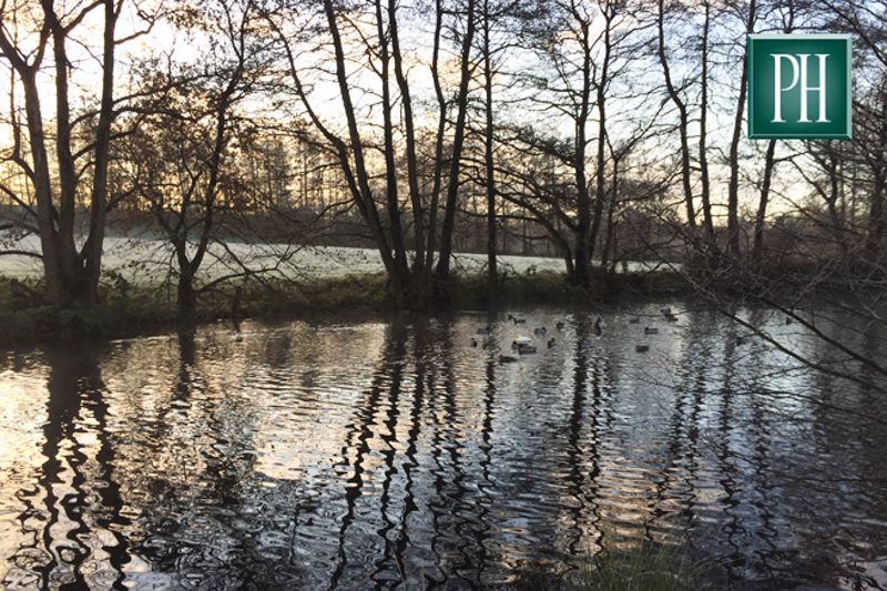 The Serpentine Alderley Park