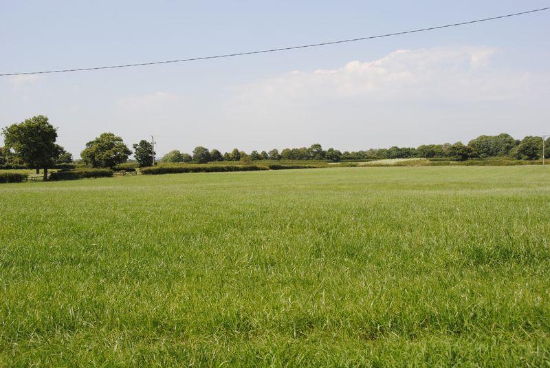 Swan Green Middlewich Road