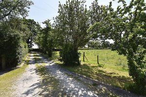 Walnut Tree Lane