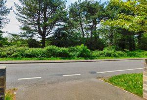 Roman Road Dibden Purlieu
