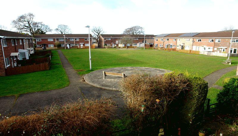 Cricket Field Green