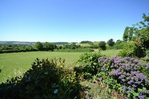 View from end of garden