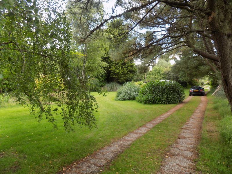 Garden with Drive to Cottage