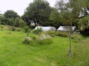 Greenhouse and Poly Tunnel