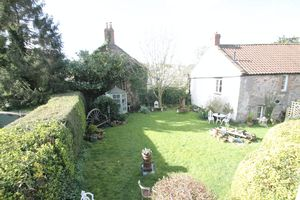 Overview of the garden