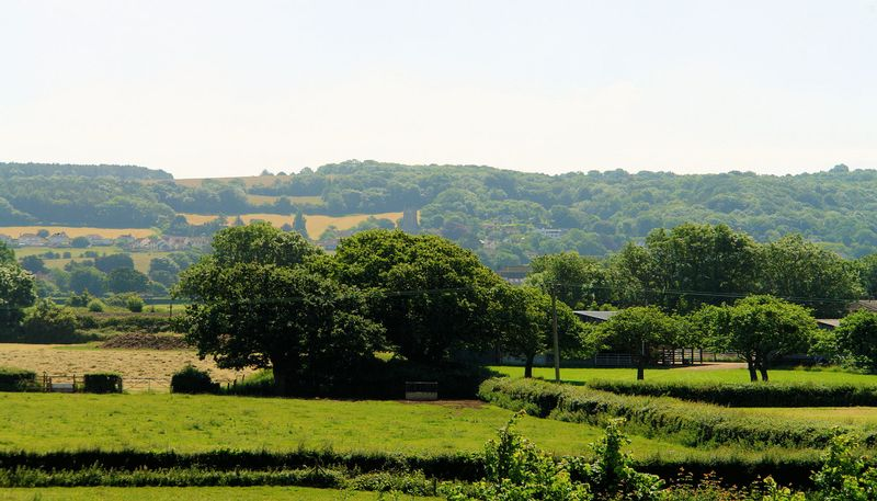 Bucklands View Nailsea