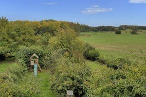 Bekesbourne Lane Littlebourne