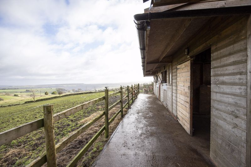 Stables & Land