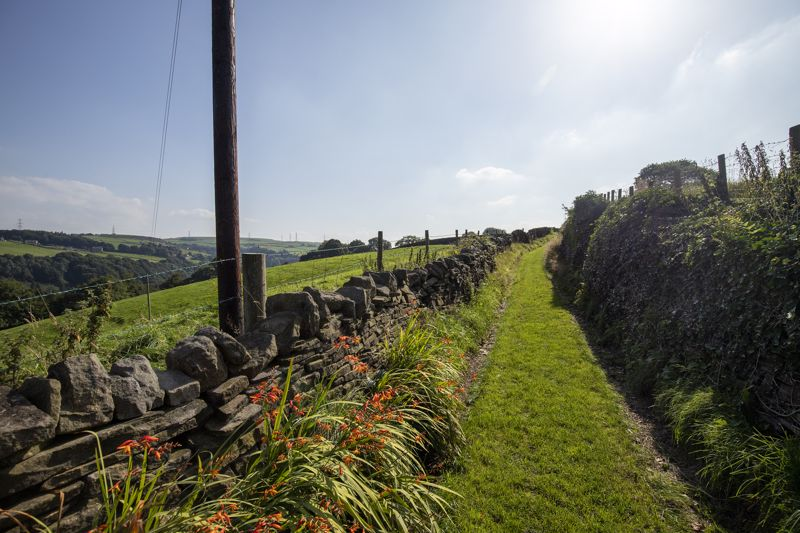 View up the lane
