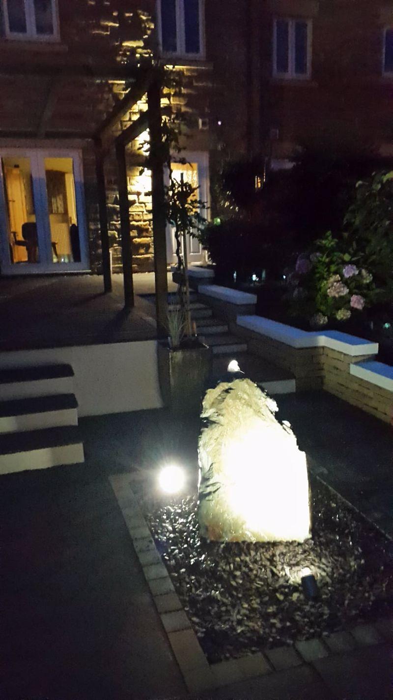 Night time garden