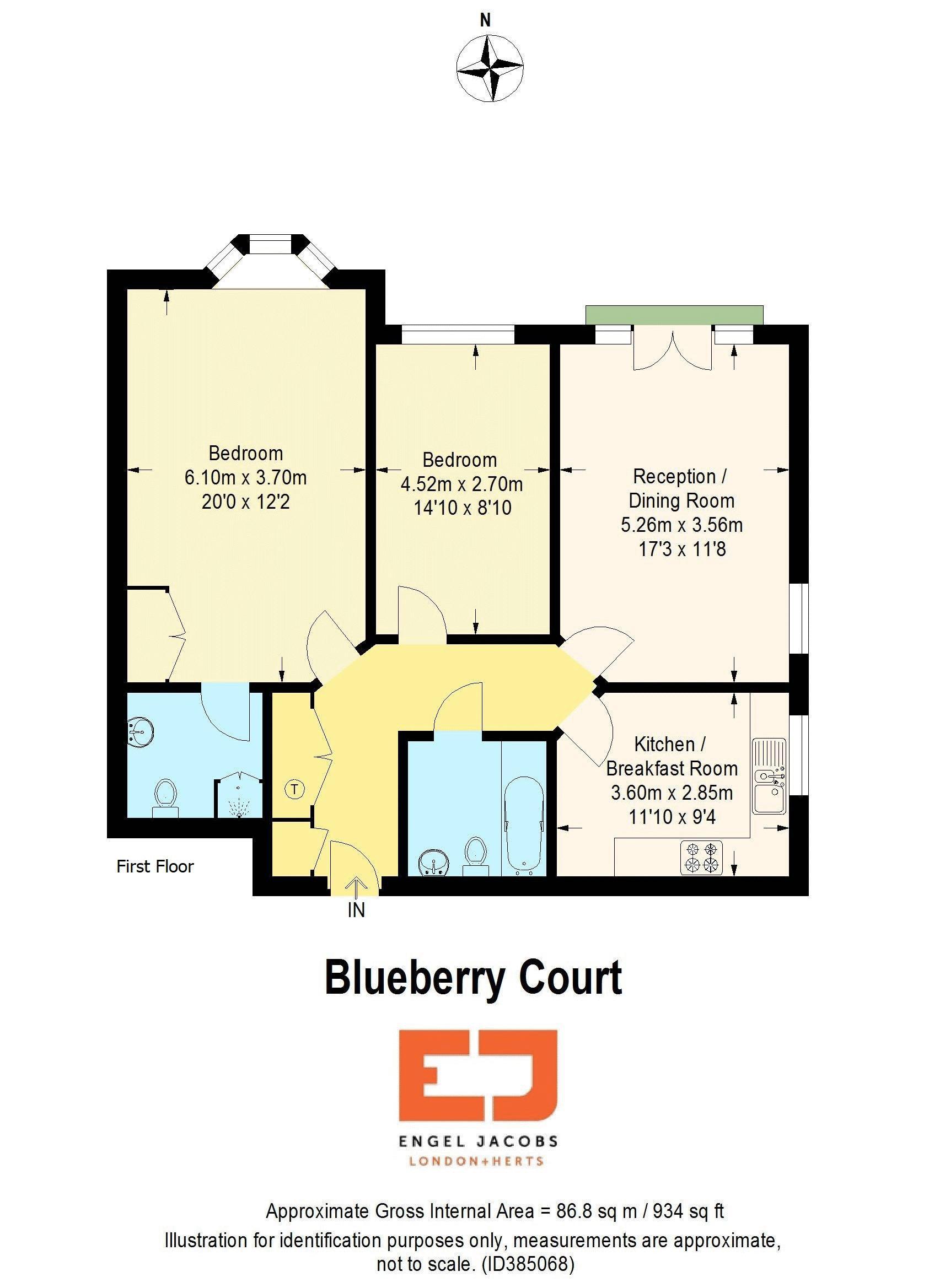 6 Blueberry FP