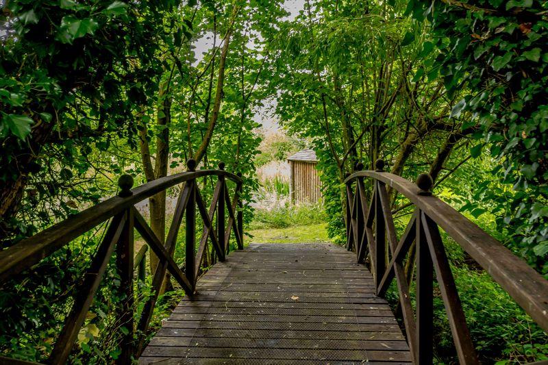 Bridge to pond