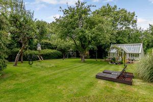 Rear garden and green house