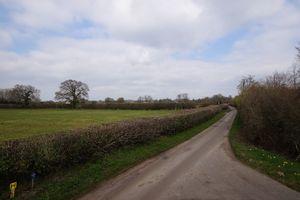 Blind Lane