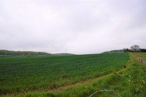 Warrendene Road