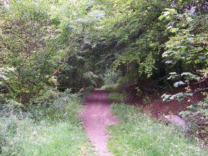 Dunsmore Lane