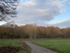 Henfield Common South