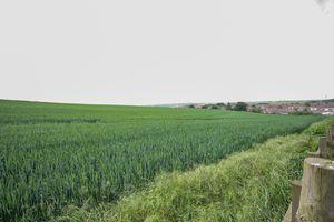 Meadowlands Close Easington