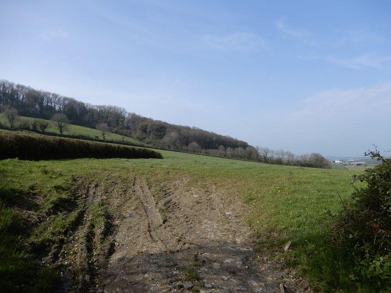 Woodland Road Denbury