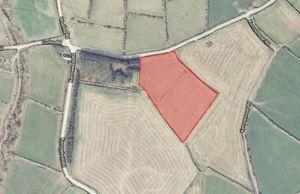2.81 Acres, Curpheys Croft Corlea Road