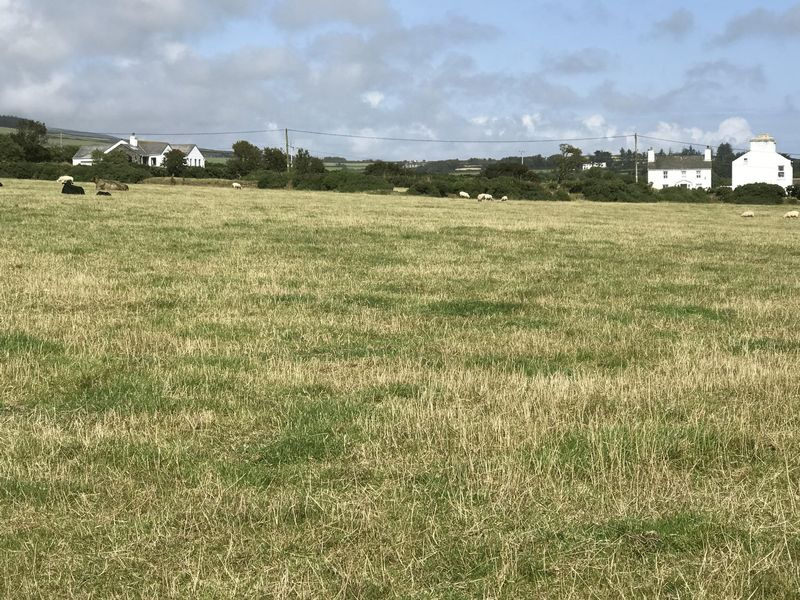 TO LET BY TENDER Land at Ballavayre Farm Ballakilpheric