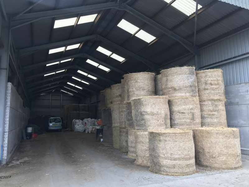 Straw and Feed Store