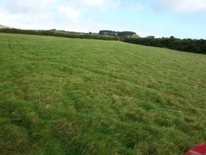 Approx 110 acres Cronk E Chule