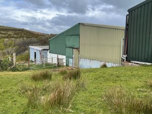 TO LET BY TENDER - Beary Farm, Laurel Bank