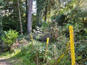 Plot of Land, Clay Head Road