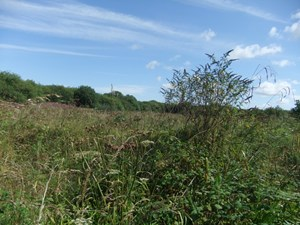 10.71 Acres of Land, Clenagh Road